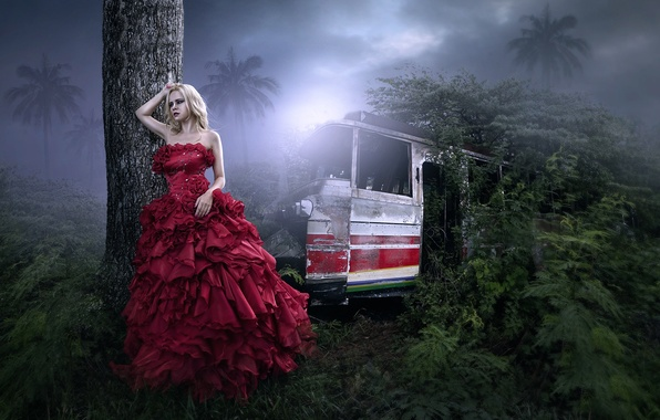 Picture girl, fantasy, jungle, art, bus, in red