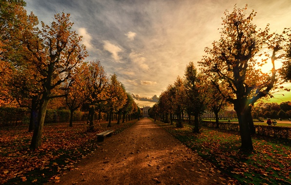 Picture autumn, bench, Park, the evening, alley