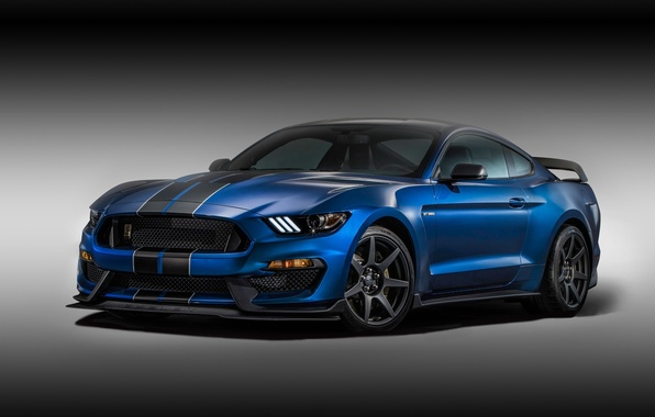Picture background, Mustang, Ford, Shelby, Ford, Mustang, the front, Muscle car, Muscle car, GT350R