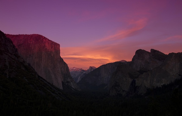 Picture forest, trees, dawn, valley, CA, California, Yosemite national Park, Yosemite National Park, the Sierra Nevada, …