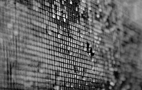 Picture drops, mesh, white, texture, blur, black, texture, 1920x1200, black and white