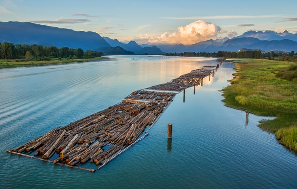 Picture forest, the sky, clouds, trees, mountains, river, logs, Canada, British Columbia, Canada, alloy