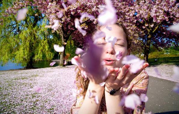 Picture girl, spring, petals, flowering