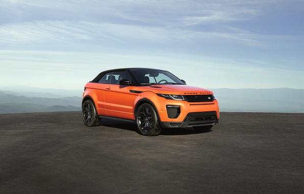 Photo wallpaper Evoque, land Rover, range Rover, Land Rover, Range Rover, Ewok