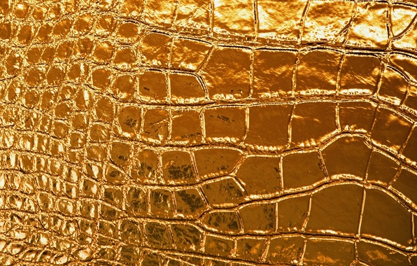 Picture lights, gold, pattern, figure, Shine, texture, leather, texture, leather, Gold, shine, tracery, radiance
