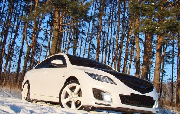 Picture snow, trees, Mazda 6