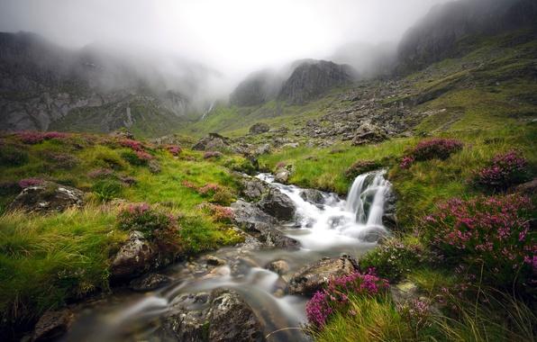 Picture mountains, fog, stream, England, valley, England, Wales, Wales, Snowdonia, Snowdonia National Park, Snowdonia, Glyderau, Cwm …