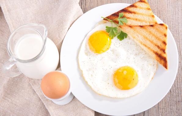 Picture greens, eggs, Breakfast, milk, bread, eggs, bread, milk, greens, Breakfast