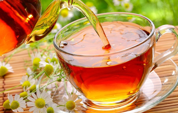 Picture glass, flowers, tea, chamomile, Cup, saucer, Mat