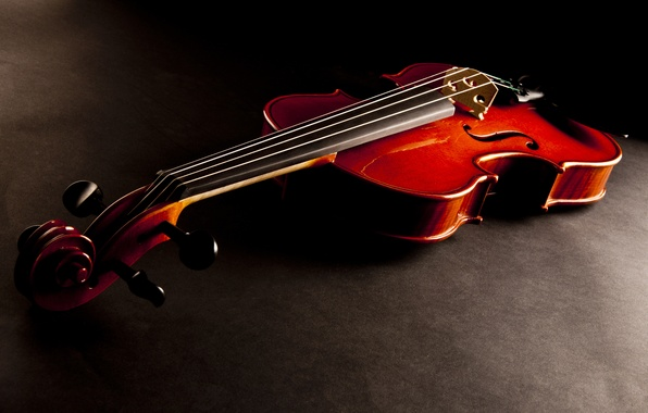 Picture the dark background, violin, strings, musical instrument
