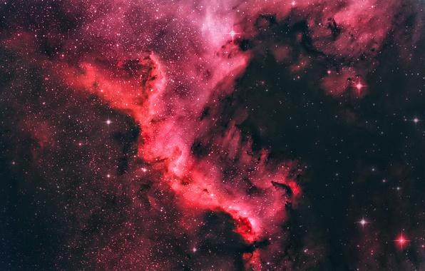 Picture Dark, Stars, Space, North America Nebula