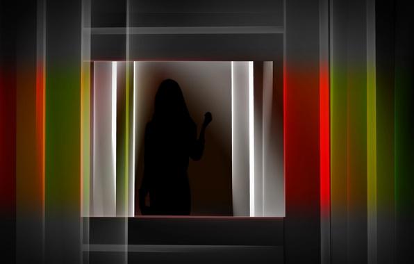 Picture color, silhouette, form