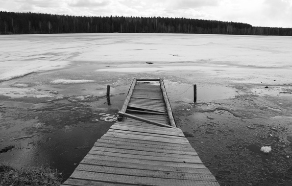 Picture ice, forest, bridge, lake, black and white