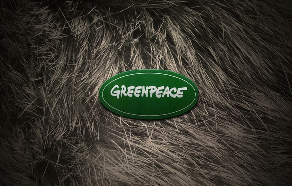 Picture animals, girl, naked, new year, wool, fur, logo, 2012, greenpeace, Greenpeace
