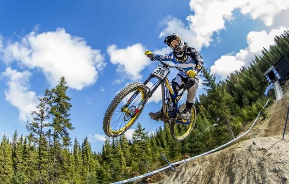 Picture bike, jump, race, sport