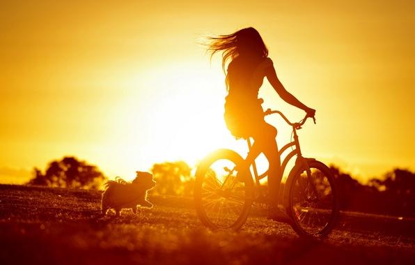 Picture girl, sunset, bike, mood, dog