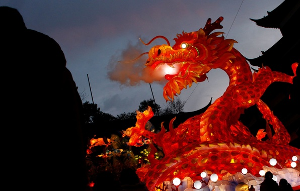 Picture night, lights, silhouette, China, Shanghai, Garden of the dragon