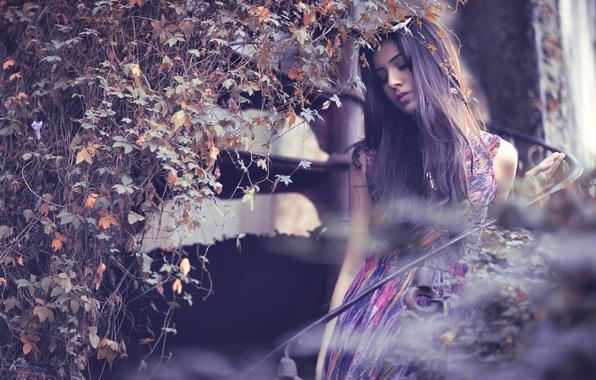 Picture leaves, girl, portrait, dress, bokeh