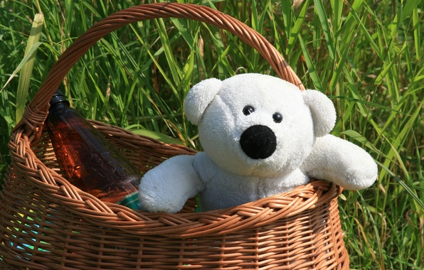 Picture greens, summer, mood, stay, Wallpaper, basket, toy, bear