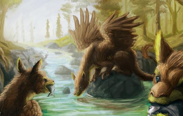 Picture fish, river, stones, wings, fantasy, art, creatures, griffins