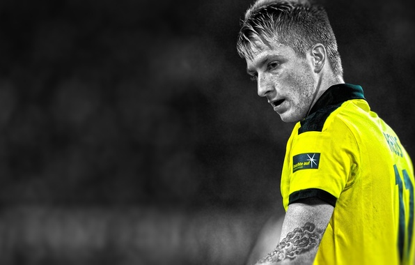 Picture Sport, Football, player, Woody, Borussia Dortmund, Borussia Dortmund, Ball Play Association Borussia, Voody. Germany, Royce, …