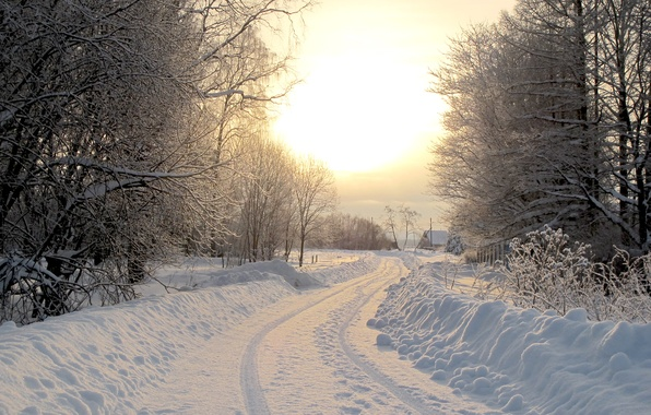 Picture winter, road, snow, trees, nature, tree, landscapes, road, home, houses, forest