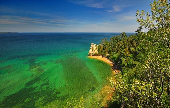 Picture sea, trees, nature, rock, shore