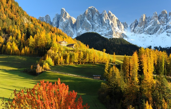 Picture Nature, Mountains, Autumn, Forest, Alps, Meadow, Italy, Landscape, Dolomites, Val Gardena