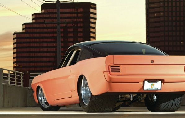 Picture Mustang, Ford, rear view, muscle car, Fastback