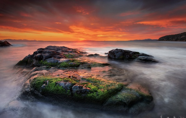 Picture water, landscape, sunset