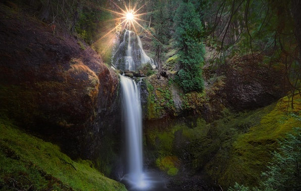 Picture forest, the sun, nature, waterfall, USA, Washington, Falls Creek Falls, Falls Creek, Gifford Pinchot National …