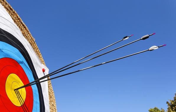 Picture arrows, straw, archery