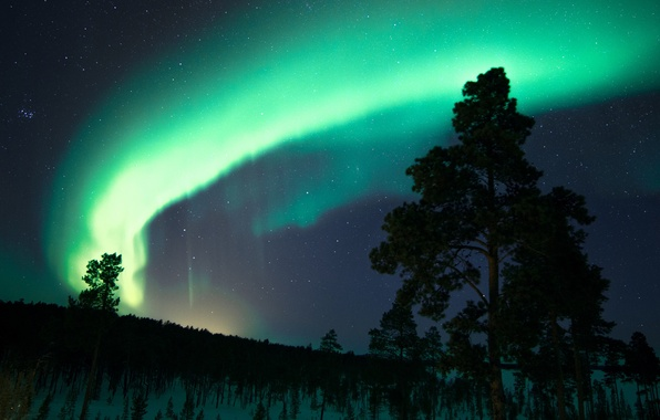 Picture the sky, stars, snow, trees, night, Northern lights, Finland