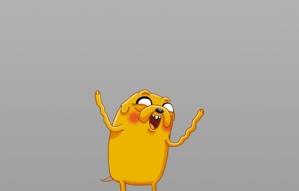 Picture yellow, color, dog, jake, adventure time, Jake, adventure time