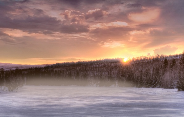 Picture winter, forest, the sky, the sun, clouds, snow, trees, sunset, orange, fog, river, tree, The …