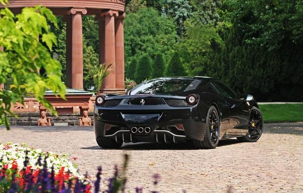 Picture trees, flowers, black, ferrari, Ferrari, black, rear view, Italy, 458 italia