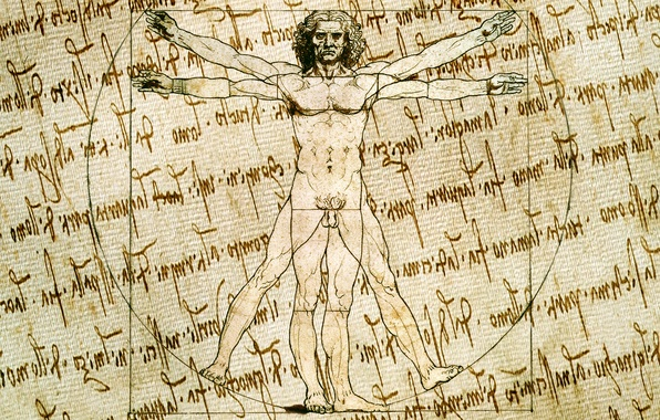Picture style, background, figure, vector, characters, sketch, artist, texture, canvas, the manuscript, Vitruvian man, Leonardo da …