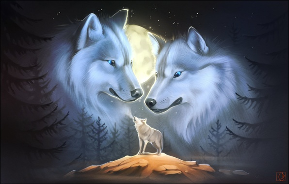 Picture animals, night, art, wolves, howl