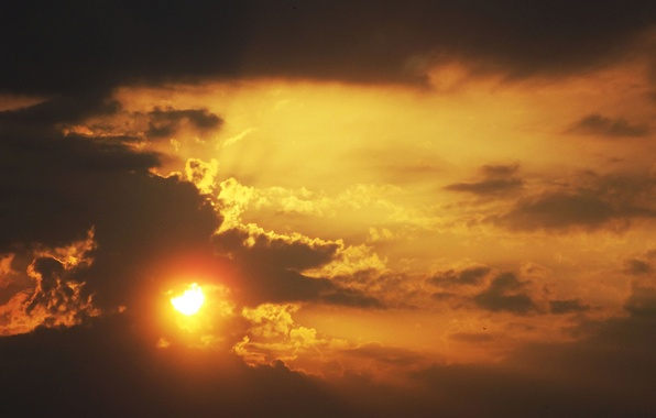Picture the sky, the sun, clouds, rays, light, orange, yellow, nature, Sunset, beauty, edge, evening.