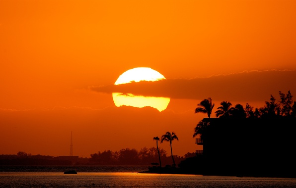 Picture sea, the sun, sunset, clouds, palm trees
