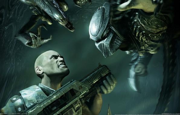 Picture weapons, people, predator, stranger, machine, aliens vs predator