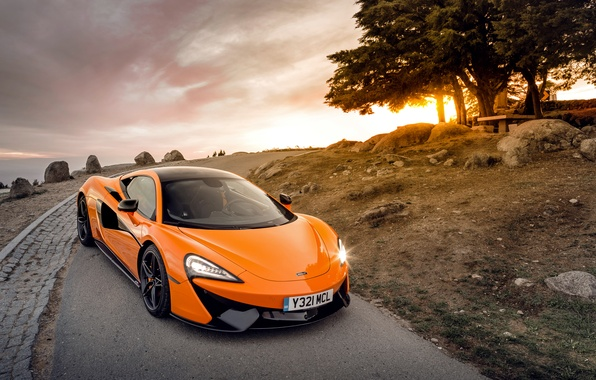 Picture the sun, trees, McLaren, supercar, McLaren, 570S