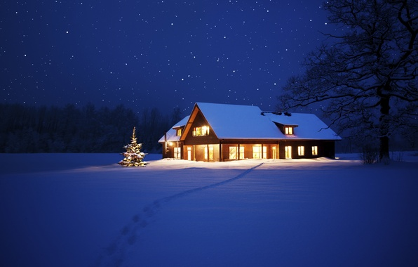 Picture lights, house, tree, New Year, Christmas, Christmas, night, winter, snow, tree
