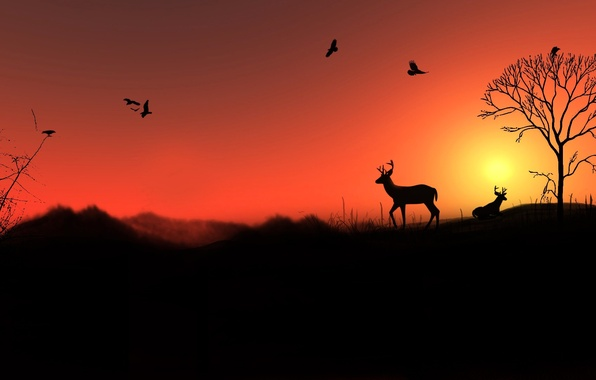 Picture the sky, the sun, landscape, sunset, birds, tree, hills, deer, silhouette