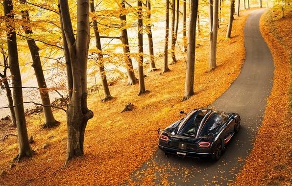 Picture autumn, background, Koenigsegg, supercar, rear view, Agera, hypercar, Agera, Koenigsegg