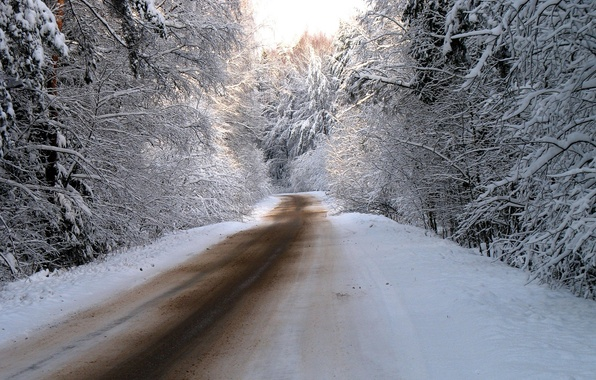 Picture winter, road, forest, snow, trees, nature, road, photos
