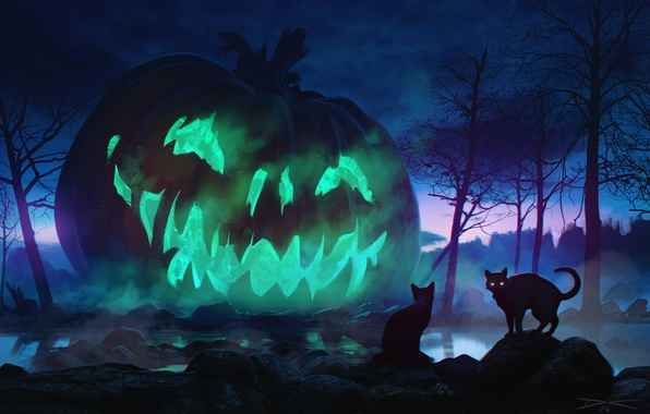 Photo wallpaper night, holiday, cats, Halloween, pumpkin