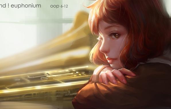 Picture look, girl, face, anime, art, profile, hibike! euphonium, oop, uma kumiko