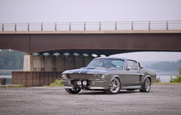 Picture road, bridge, Wallpaper, Mustang, Ford, Shelby, GT500, Eleanor, Ford, legend, muscle car, wallpapers