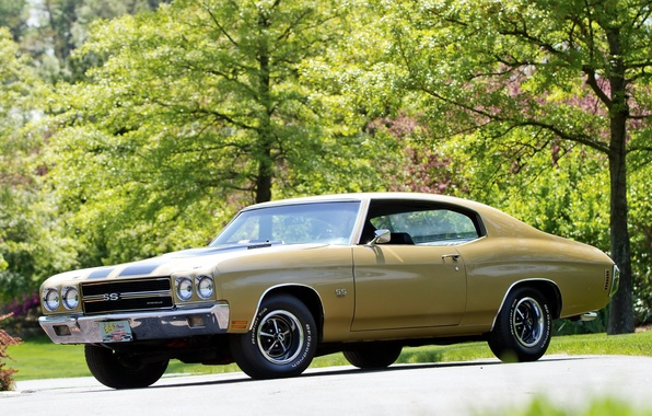 Photo wallpaper muscle car, Chevelle, 1970, Hardtop Coupe, 454, Chevrolet, the front, Chevrolet, muscle car